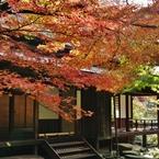紅葉を見下ろす月華殿