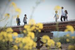 流れ橋のあった春