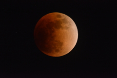 1月31日の月食