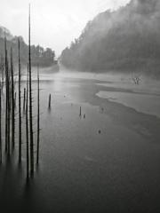 どしゃ降りの自然湖