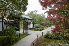 好古園秋景色(4)