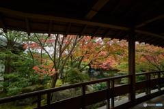好古園秋景色(3)