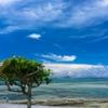 沖縄県 備瀬崎の海