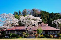 旧上岡小学校の春。
