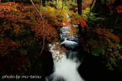 小滝に秋来る