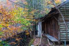 鉱山廃集落の秋-2