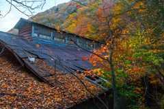 鉱山廃集落の秋-4