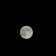 NIKON NIKON 1 J2で撮影した(中秋の名月)の写真(画像)