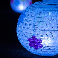NIKON NIKON 1 J2で撮影した(宵の灯)の写真(画像)