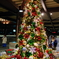 ディズニーのクリスマスツリー リゾートライナー ディズニーシー・ステーション