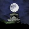 月下の稲葉山城Ⅱ