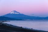 ペールピンクに染まる富士