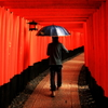 Rainy Red Road...