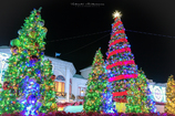 +:.。..。.:*Merry Christmas*:.。..。.:+