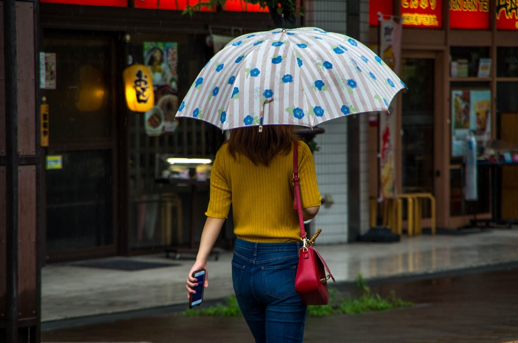 今日も雨‥