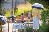 9月1日(木)秋めく夏の日・・