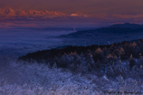 紅く染まる北アルプス連峰