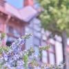 「神戸異人館の穏やかな春」