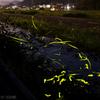 光る川の流れ