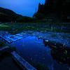 秋里川の蛍