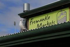 フリーマントルマーケット