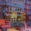 デンマーク《コペンハーゲン》イルムスボーリフスのクリスマスディスプレーのガラス