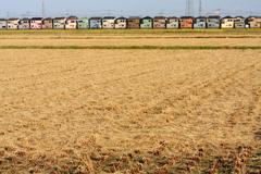 刈り跡の色々住宅