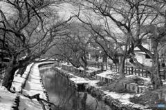 冬の新河岸川