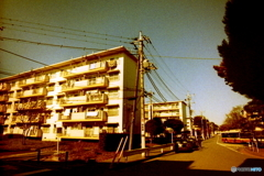 昭和の団地