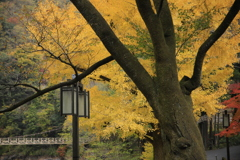 御岳の秋色