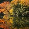 湖面秋景色