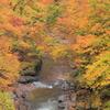 丹波山の秋Ⅱ