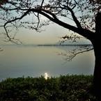 NIKON NIKON D7100で撮影した(夕凪)の写真(画像)