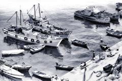 1972『 漁港の昼下がり 』