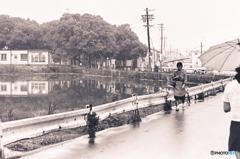 1974『 雨の日 』3