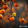 『 渋い秋の名脇役 』