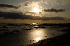 黄金色の浜