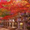 気分は秋の京都
