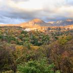 CANON Canon EOS 6Dで撮影した(十二湖の山紅葉)の写真(画像)