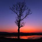 FUJIFILM X10で撮影した(夕暮れのキミ)の写真(画像)