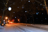 雪舞うロマンチック街道