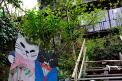 尾道 街歩き 3 猫の風景