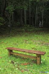 まぼろしのベンチ