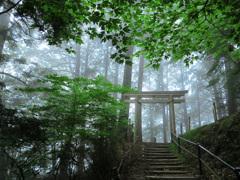 朝霧の聖域