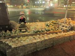 福岡市中央区天神の積雪の様子です②
