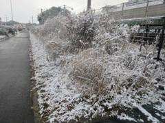 佐賀県基山町の積雪 ⑦