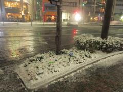 福岡市中央区天神の積雪の様子です⑨