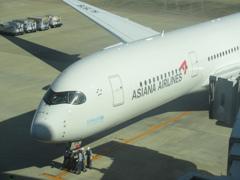 福岡にASIANA A350が飛来です ②
