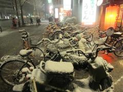 福岡市中央区天神の積雪の様子です⑧