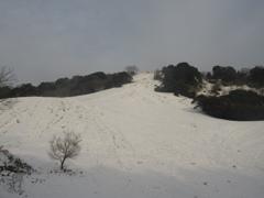 雪の積もった福岡県内⑥